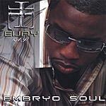 Eijay Embryo Soul (Soul Remix)