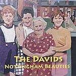 The Davids Nottingham Beauties