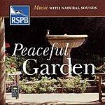 Natural Sounds Peaceful Garden