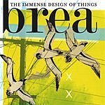 Brea The Immense Design Of Things