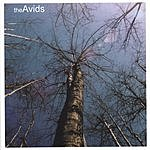 The Avids Above The Underground