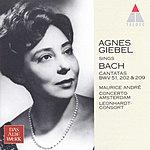 Agnes Giebel Cantatas Nos.51, 202 & 209