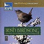 Natural Sounds Irish Birdsong