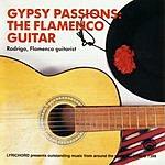 Rodrigo Gypsy Passions: The Flamenco Guitar