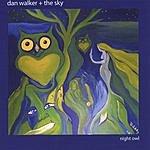Dan Walker & The Sky Night Owl