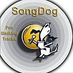 Karaoke All Stars Karaoke Hits: Pure Country, Vol.1
