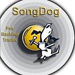Karaoke All Stars Karaoke Hits - Pure Country Vol.54