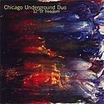 Chicago Underground Duo 12 Degrees of Freedom