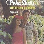 Arthur Lyman Puka Shells