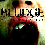 Bludge You Probably Suck