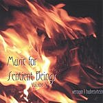 Vernon L. Hohenstein Music For Sentient Beings, Vol.4