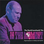 David Leonhardt In The Moment  Improvisations In Melody And Rhythm