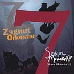 Zagnut Orkestar Sedam Machaka