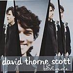 David Thorne Scott Shade