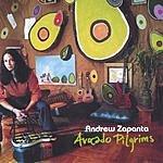 Andrew Zapanta Avocado Pilgrims