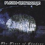Flesh-Resonance The Feast Of Shadows