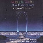 Joseph Welz One Stormy Night (Healing The Wounds Of Tsunami)