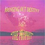 The Prophit Bringing Out Destiny