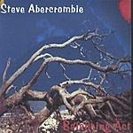 Steve Abercrombie Balancing Act