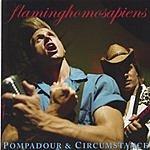 Flaminghomosapiens Pompadour & Circumstance