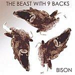 Bison The Beast With Nine Backs