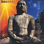 Boxelder Love Light Affection