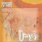Sandy Foster & The Paper Bag Band Orangify