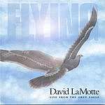 David Lamotte Flying: Live From The Grey Eagle