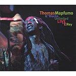 Thomas Mapfumo & The Blacks Unlimited Live At El Rey