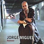 Jorge Miguel Flamenco