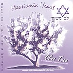 Messianic Heart Olive Tree