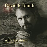 David E. Smith After The Storm