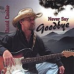David Cooler Never Say Goodbye