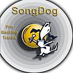 Karaoke All Stars Golden Oldies Vol.8