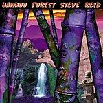 Steve Reid Bamboo Forest