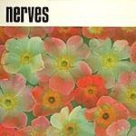 The Nerves Nerves