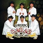 Sagaz Musical Sagaz Musical