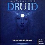Medwyn Goodall Druid