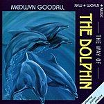 Medwyn Goodall Way Of The Dolphin