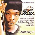 Anthony B Reggae Max