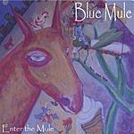 Blue Mule Enter The Mule