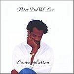 Peter DuVal Lee Contemplation