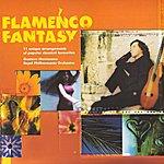 Gustavo Montesano Classic Flamenco