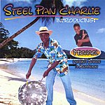 Steel Pan Charlie Bare Feet In The Sand