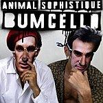 Bumcello Animal Sophistique