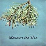 Between The Pine Between The Pine