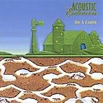 Acoustic Endeavors On A Farm