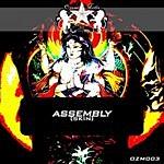 Assembly Skin (Single)