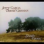 David Grisman Shady Grove