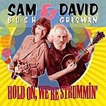 Sam Bush Hold On, We're Strummin'